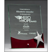 "10"" Silver Star Glass Award"