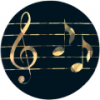 1. 2BG127 - BLACK/GOLD MUSIC