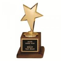 """6.75"""" MODERN STAR AWARD"""