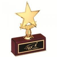 """5"""" STAR AWARD"""