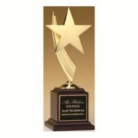 """13"""" STAR AWARD"""
