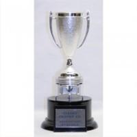 "10""-15"" PISTON CUP AWARD"