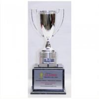 "15"" PISTON CUP AWARD"