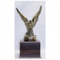 "12.5""-17"" METAL EAGLE AWARD"