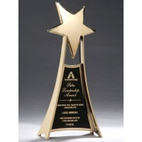 "10.75"" Metal Star Award"
