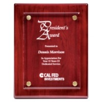 "8""x10""-10""x13"" Floating Acrylic Piano Finish Plaque - 2 Colors"